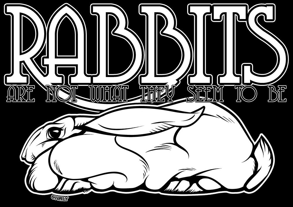 th-rabbitswtn